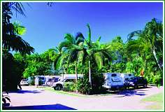 Tropical Hibiscus Caravan Park - Tourism Cairns