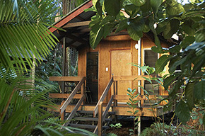 Cape Trib Beach House - Tourism Cairns