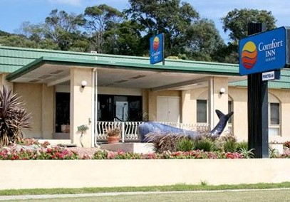 Comfort Inn Albany - Tourism Cairns