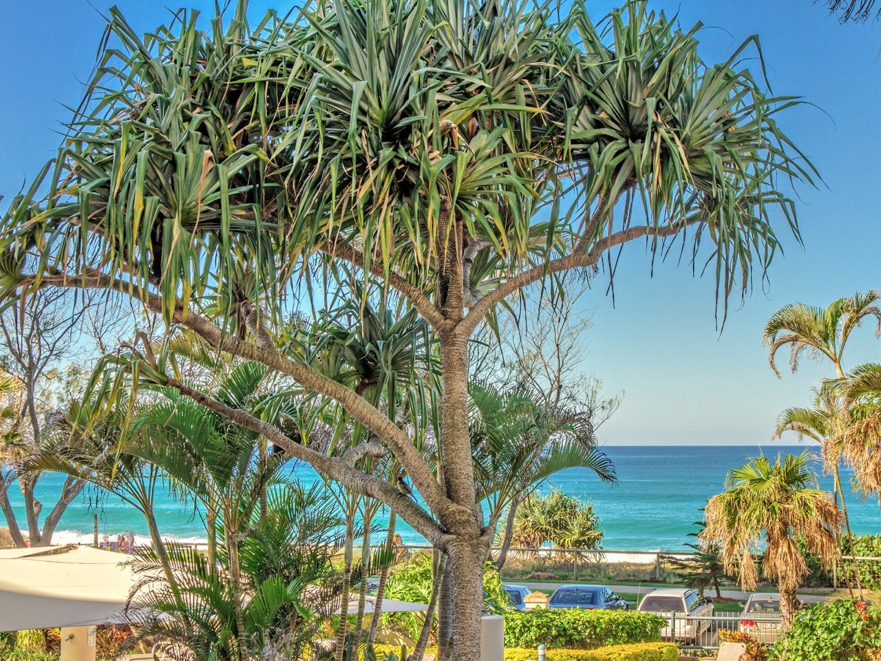 AA Oceana On Broadbeach - Tourism Cairns