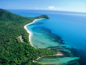 Cape Tribulation Camping - Tourism Cairns