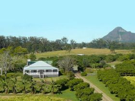 Mango Hill Farm - Tourism Cairns