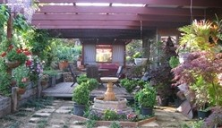 Blossoms Bed and Breakfast - Tourism Cairns