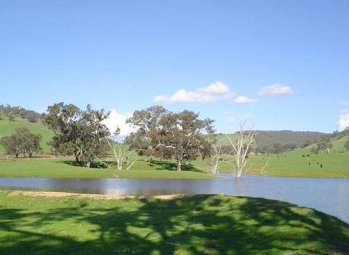Hillview Farmstay - Tourism Cairns