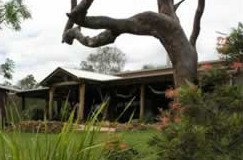 The Hollow Log Country Retreat - Tourism Cairns