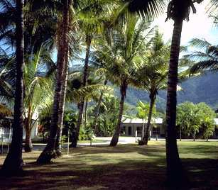 Clifton Palms - Tourism Cairns
