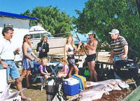 Shark Bay Cottages - Tourism Cairns