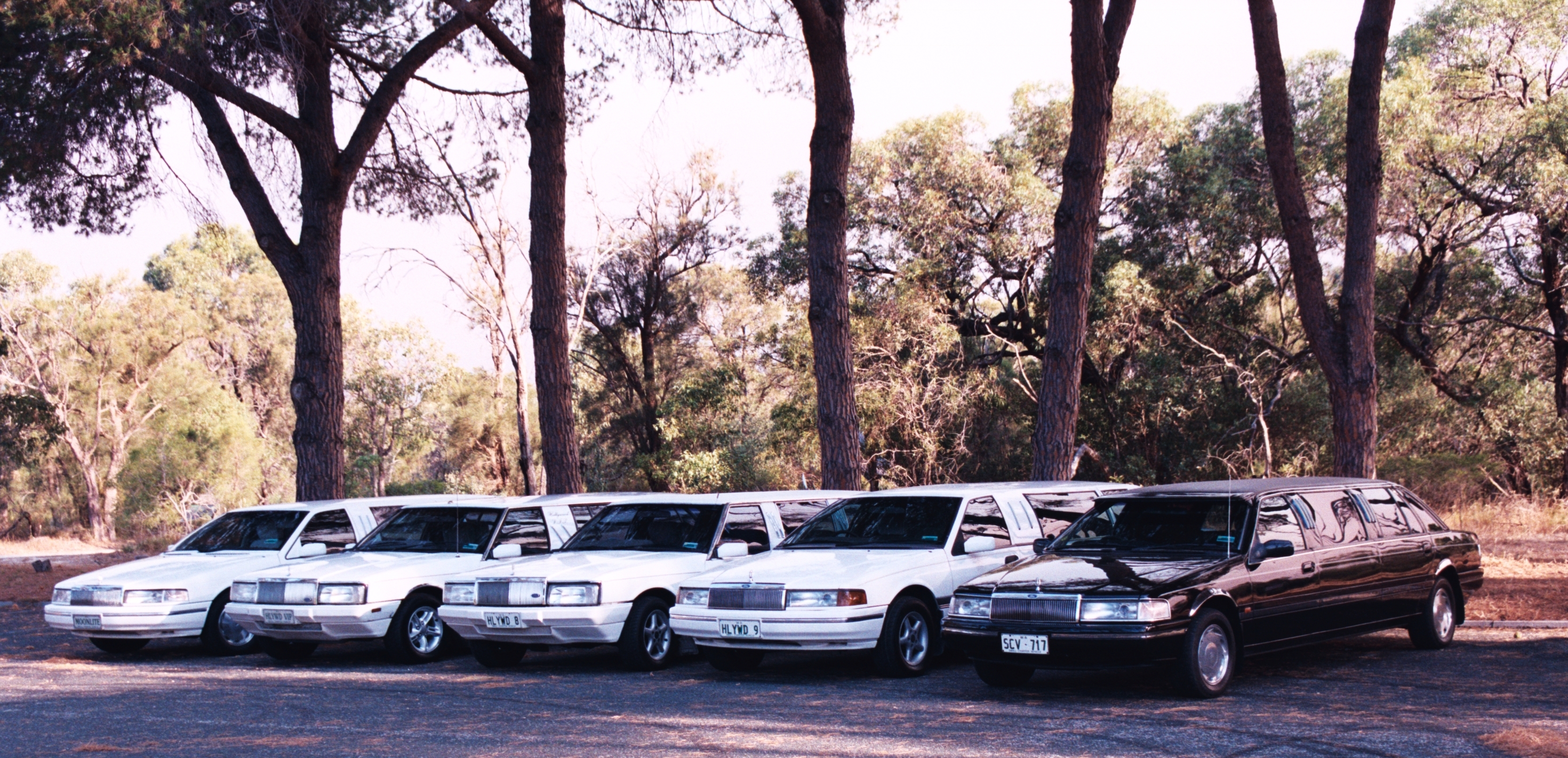 Hollywood VIP Limousines - Tourism Cairns