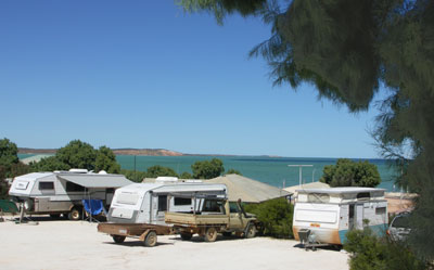Blue Dolphin Caravan Park and Holiday Village - Tourism Cairns