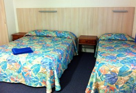 Mango Tree Motel - Tourism Cairns