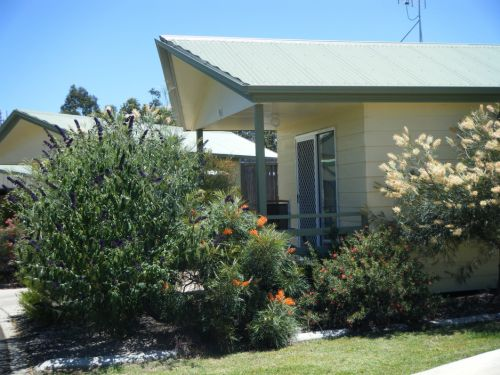Pepper Tree Cabins - Tourism Cairns