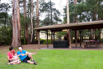 BIG4 Yarra Valley Holiday Park - Tourism Cairns