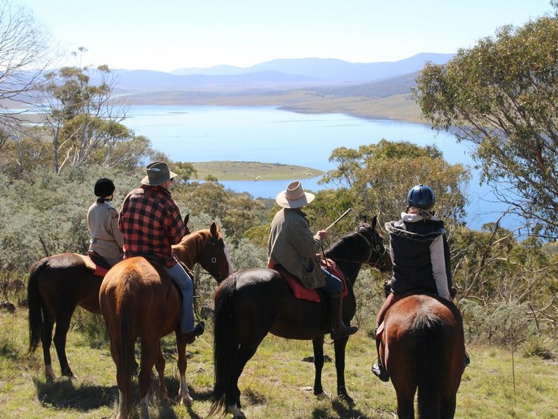 Reynella Homestead and Horseback Rides - Tourism Cairns