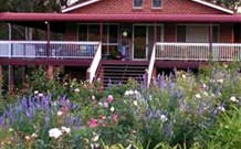 Rose Patch Bed and Breakfast - Tourism Cairns