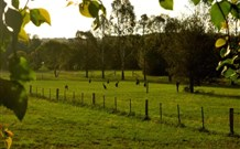 Stone Cottage Mittagong - Tourism Cairns