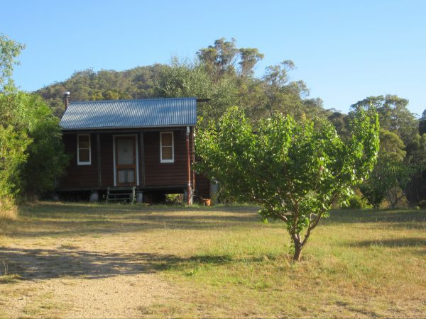 Peach Tree Cabin - Tourism Cairns