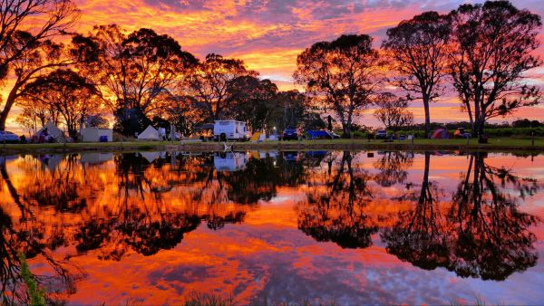 Coonawarra Bush Holiday Park - Tourism Cairns