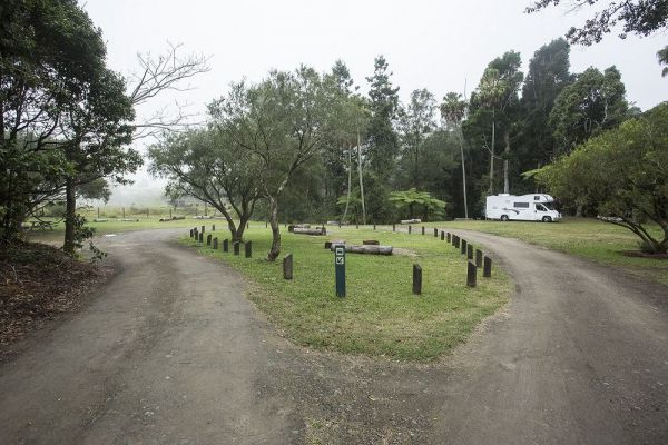 Eungella National Park Camping Ground - Tourism Cairns