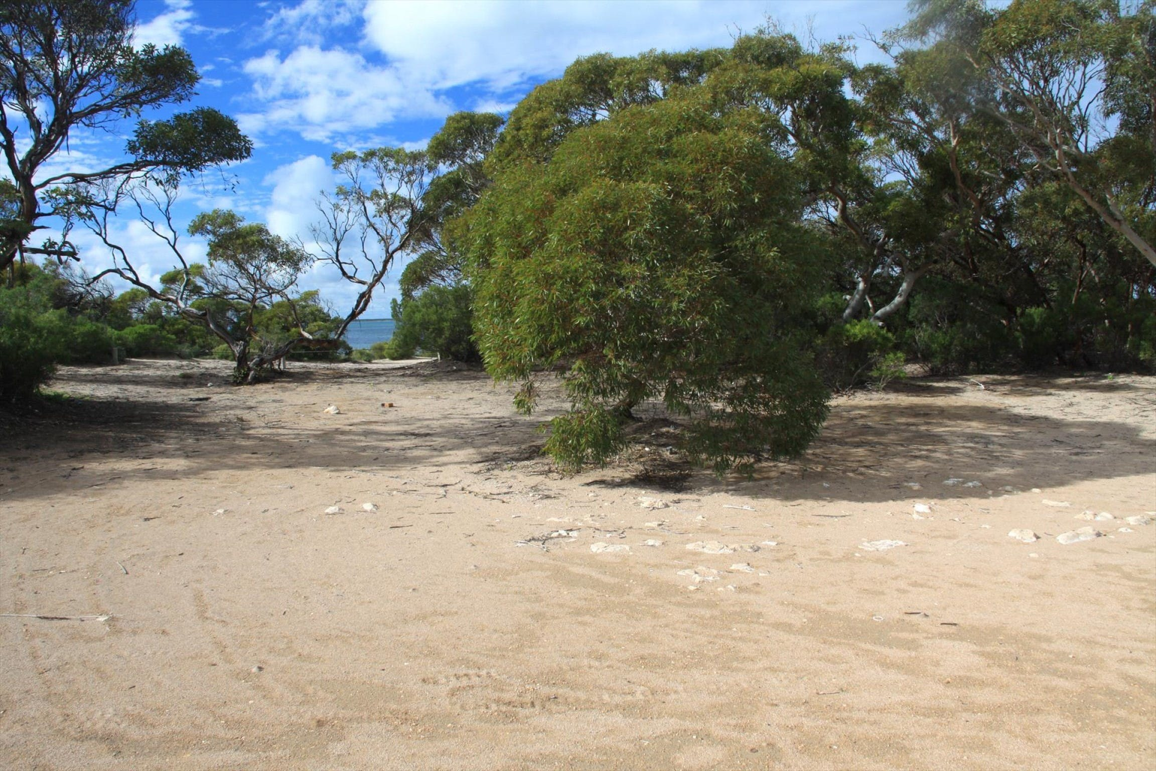 Acraman Creek Conservation Park Campgrounds - Tourism Cairns