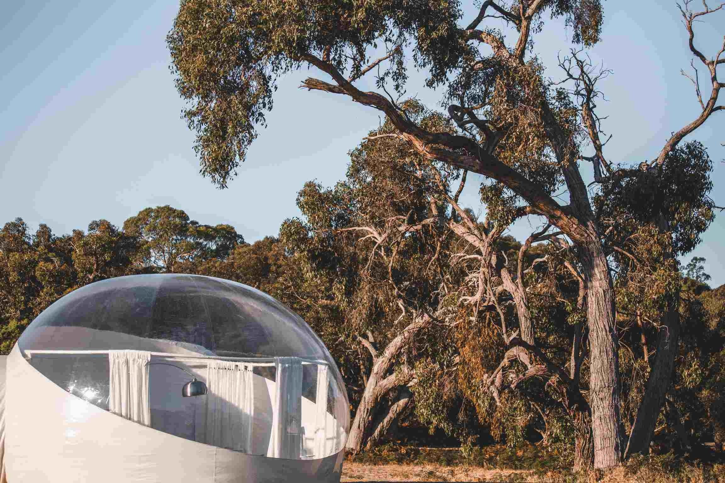 Coonawarra Bubble Tents - Tourism Cairns