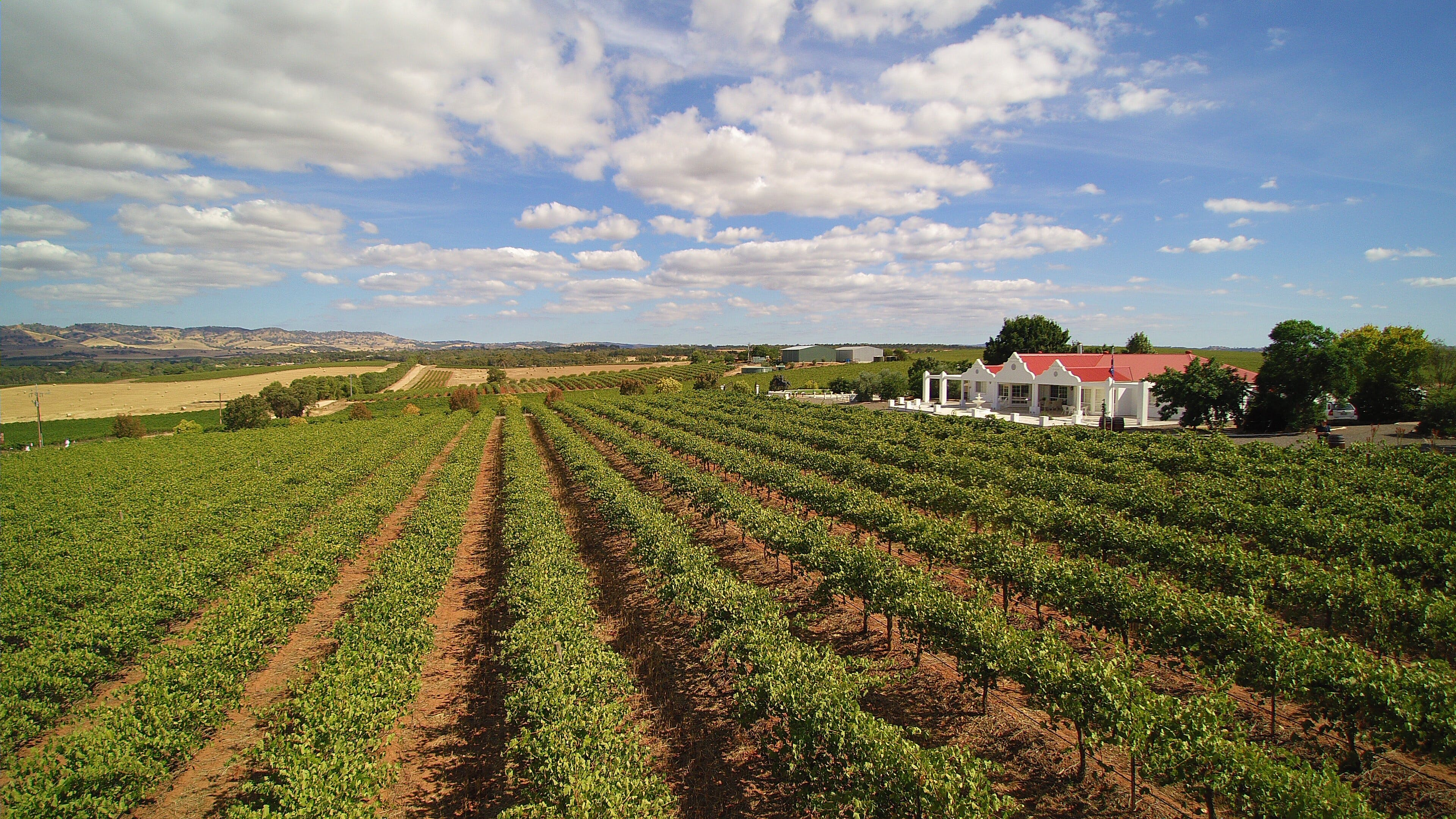 1837 Barossa Luxury Vineyard Cottages - Tourism Cairns
