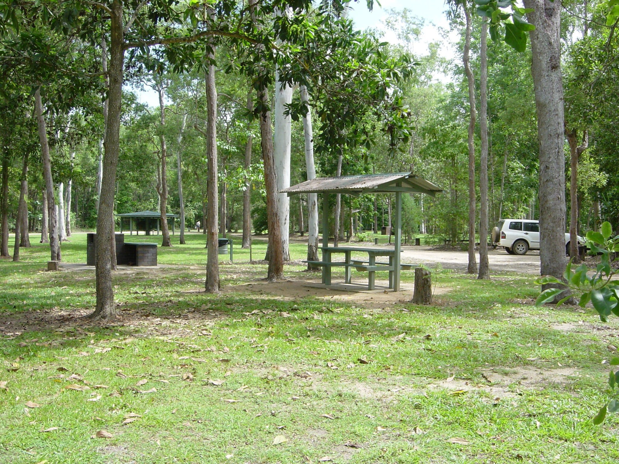 Broadwater camping area Abergowrie State Forest - Tourism Cairns
