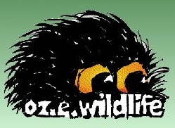 OZe Wildlife - Tourism Cairns