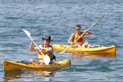 Manly Kayaks - Tourism Cairns