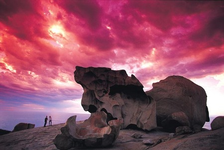 Kangaroo Island Adventure Tour 2 day/1 night - Tourism Cairns