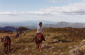 High Country Horses - Tourism Cairns