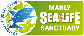 Manly SEA LIFE Sanctuary - Tourism Cairns