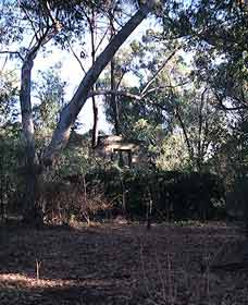 Ghost House Walk Trail Yanchep National Park - Tourism Cairns