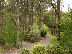 Mount Lofty Botanic Garden - Tourism Cairns