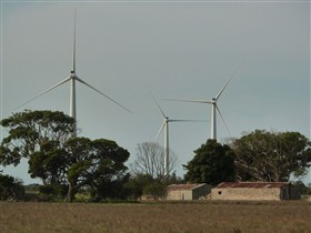 Wattle Point Wind Farm - Tourism Cairns