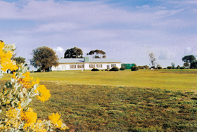 Lucindale Country Club - Tourism Cairns
