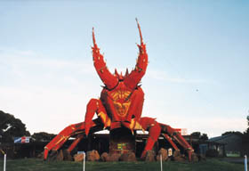 The Big Lobster - Tourism Cairns