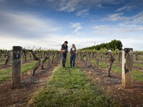 Coonawarra Wineries Walking Trail