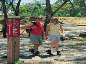 Riesling Trail - Tourism Cairns