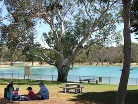 Naracoorte Nature Park and Swimming Lake - Tourism Cairns