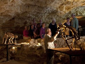 Naracoorte Caves National Park - Tourism Cairns