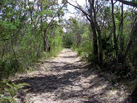 Wendy's Walk - Tourism Cairns