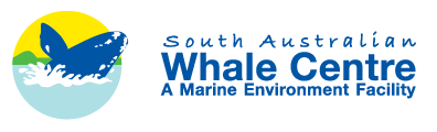 South Australian Whale Centre - Tourism Cairns