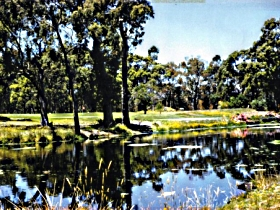 Smithton Country Club - Tourism Cairns