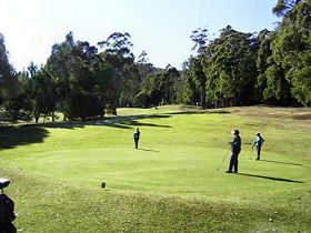 Sheffield Golf Course - Tourism Cairns