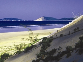 Cooloola Great Sandy National Park - Tourism Cairns