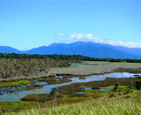 Eubenangee Swamp National Park - Tourism Cairns