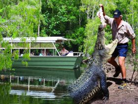 Hartleys Crocodile Adventures - Tourism Cairns