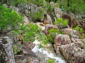 Crows Nest National Park - Tourism Cairns
