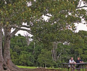 Ravensbourne National Park - Tourism Cairns
