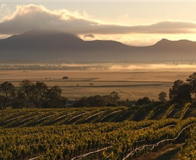 Montara Wines - Tourism Cairns